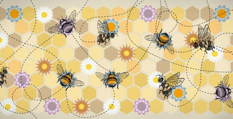 SVA-2016-Bees-optimised