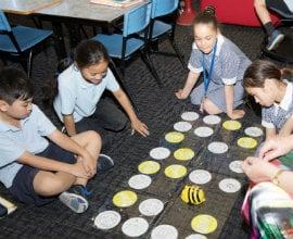 STEM Learning Hub Schools